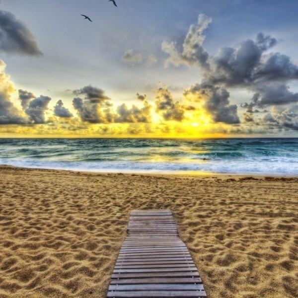 Дорожки для пляжа